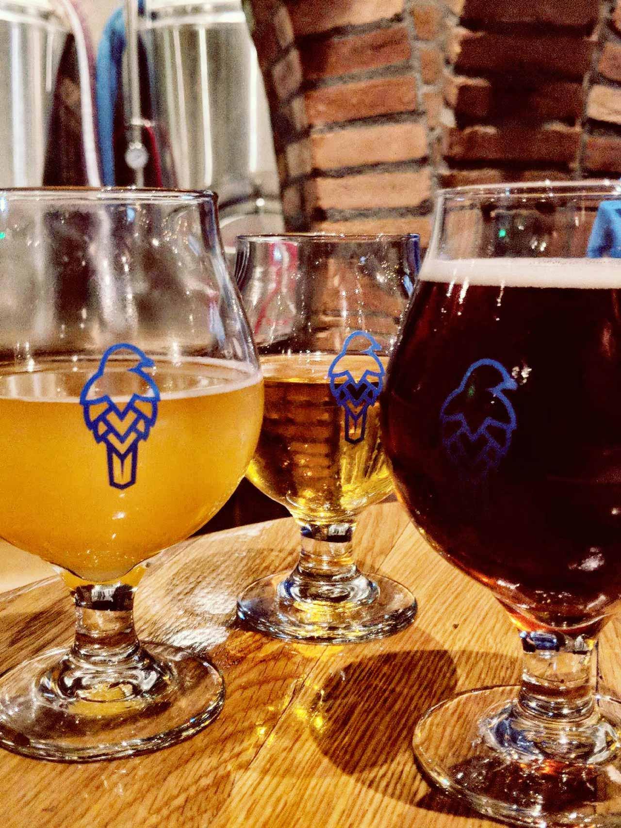 Sherman Oaks Bluebird Brasserie Beer Glasses